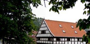 holandia-na-zulawach-wislanych-czyli-wizyta-holenderskich-dziennikarzy-turystycznych-thumb.jpg
